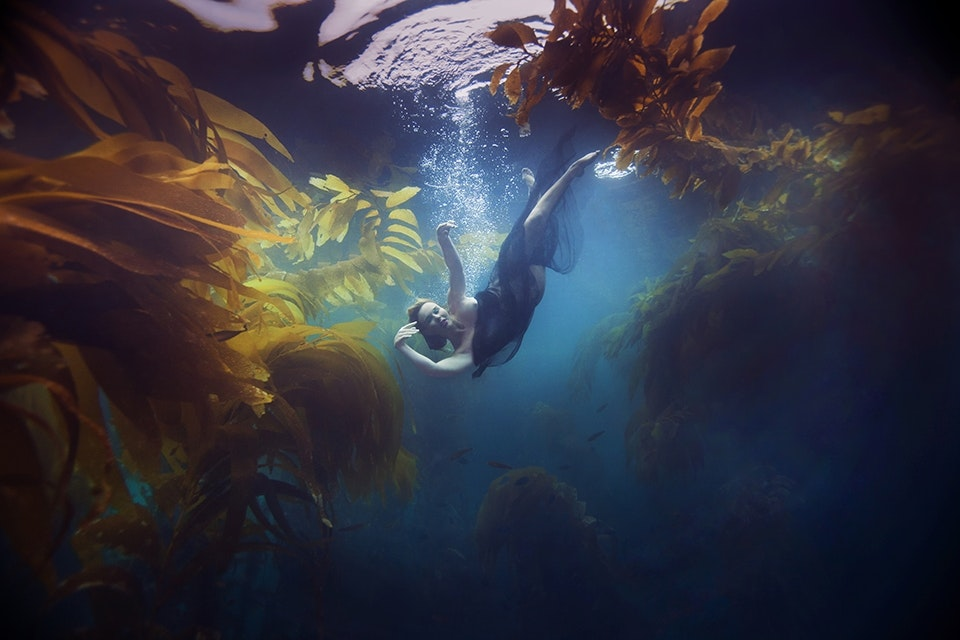 KELSEY WILHM IS SEEN FLOATING IN A BED OF KELP SURROUNDED BY FISH IN THE OCEAN. (PHOTOGRAPH BY © JENNY BAUMERT 2013.)