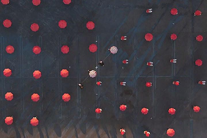 OK Go Films Vid From A Drone — Bird In Flight