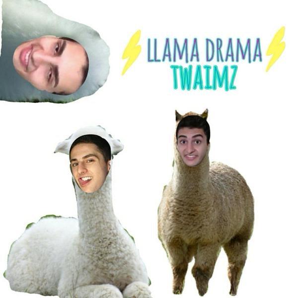 llama_16
