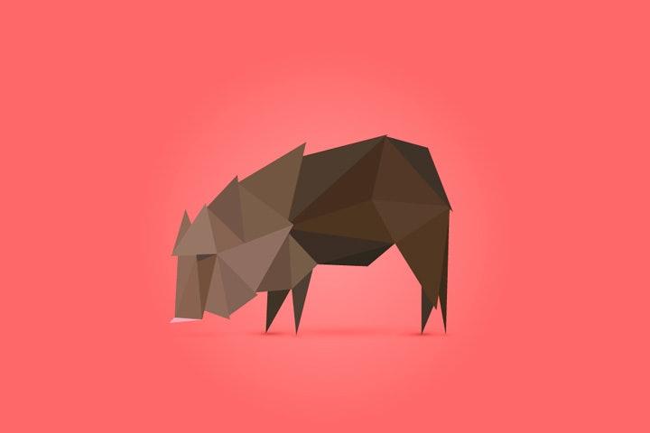 okapi3