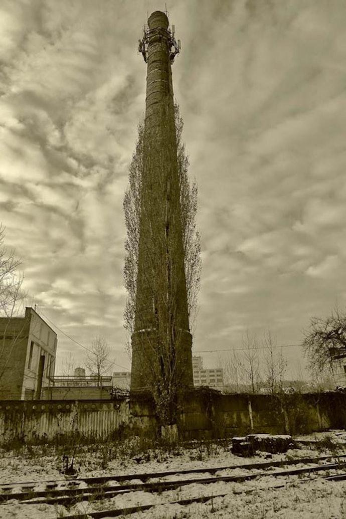 Miloserdov_08