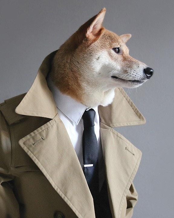 mensweardog_03