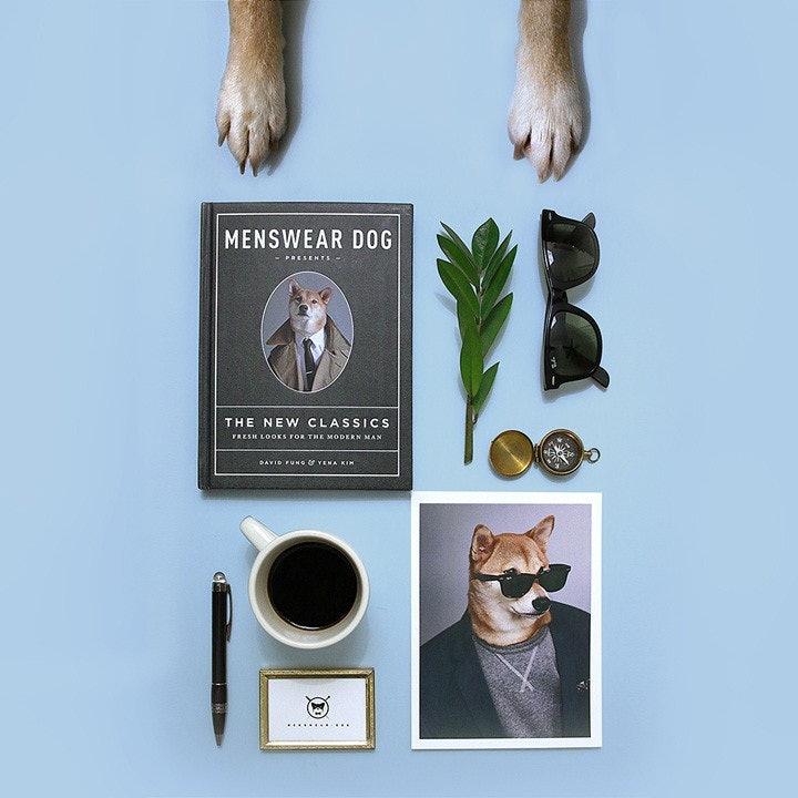 mensweardog_09
