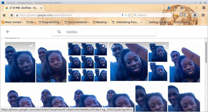 google-gorillas