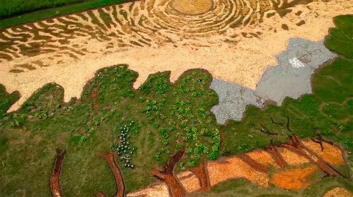 Van-Gogh_02