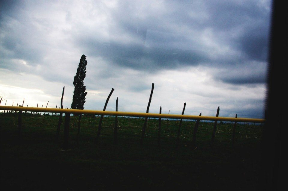 Nasalenko_08