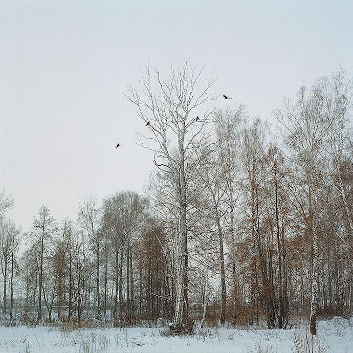 albina-shaymuratova-shamany-03