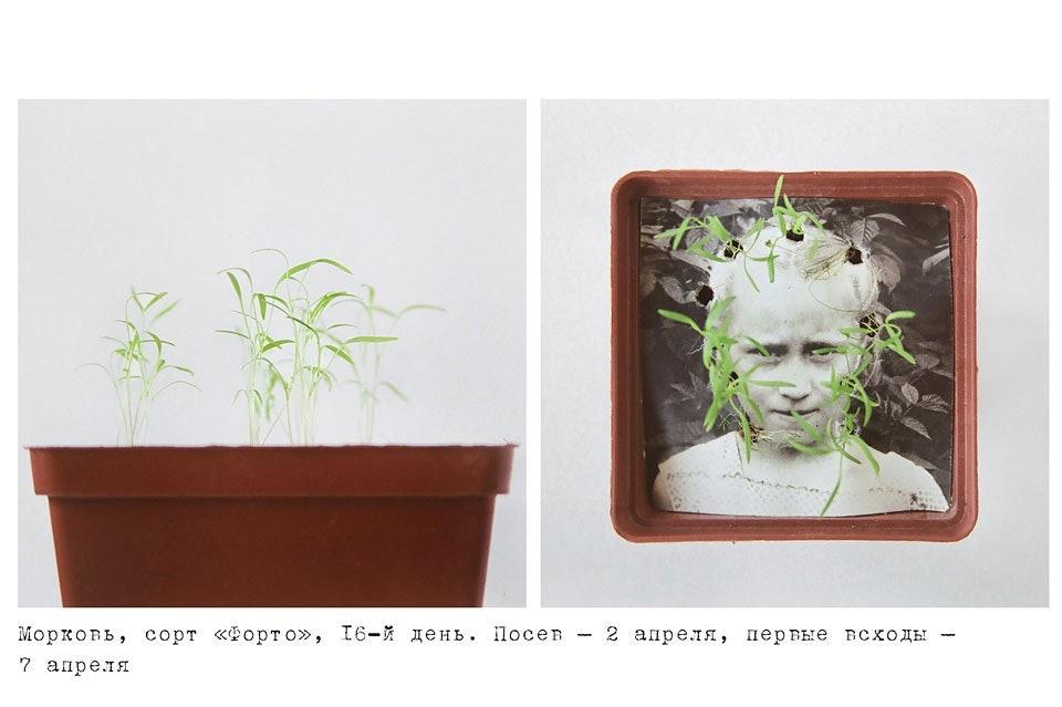 anastasiya-bogomolova-portfolio-trava-04