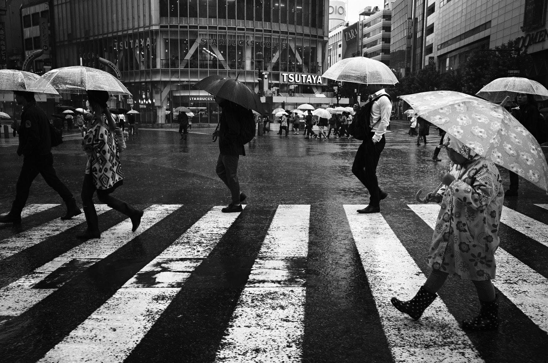 tadashi-onishi-rain-and-strain-15-big