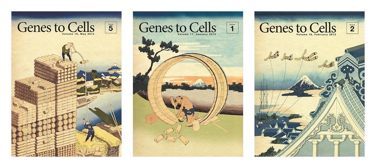 02_genes