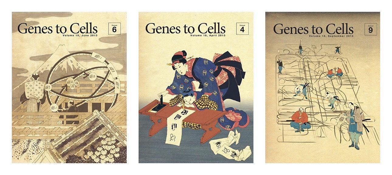 08_genes