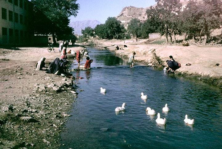 afgan_21