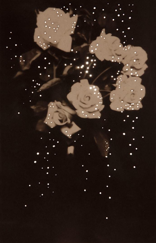 amy-friend-dare-alla-luce-Mom'sRoses,1914-min