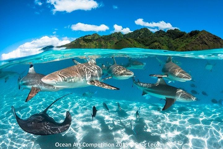 ocean_10