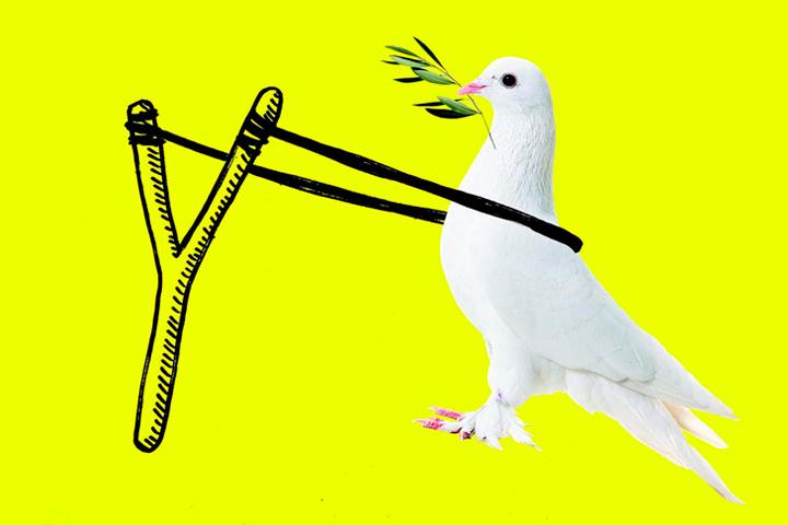 Британская академия дизайна книжных обложек назвала лучшие работы года — Bird In Flight