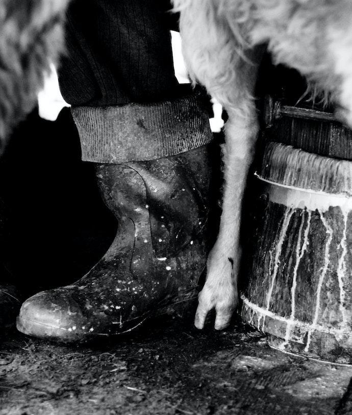 Yurko Dyachyshyn_(Carpathian shepherds)_06_resize