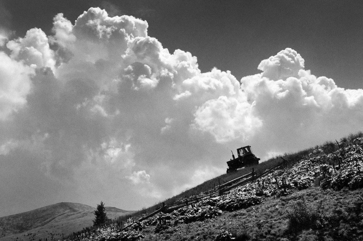 Yurko Dyachyshyn_(Carpathian shepherds)_35_resize