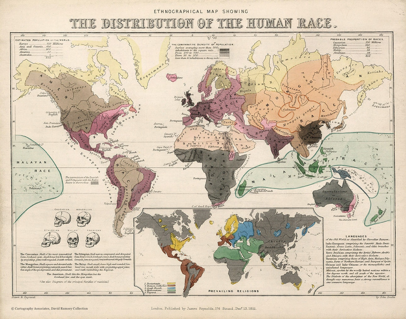 Ethnographical-map-showing-the-distribution-of-the-human-race