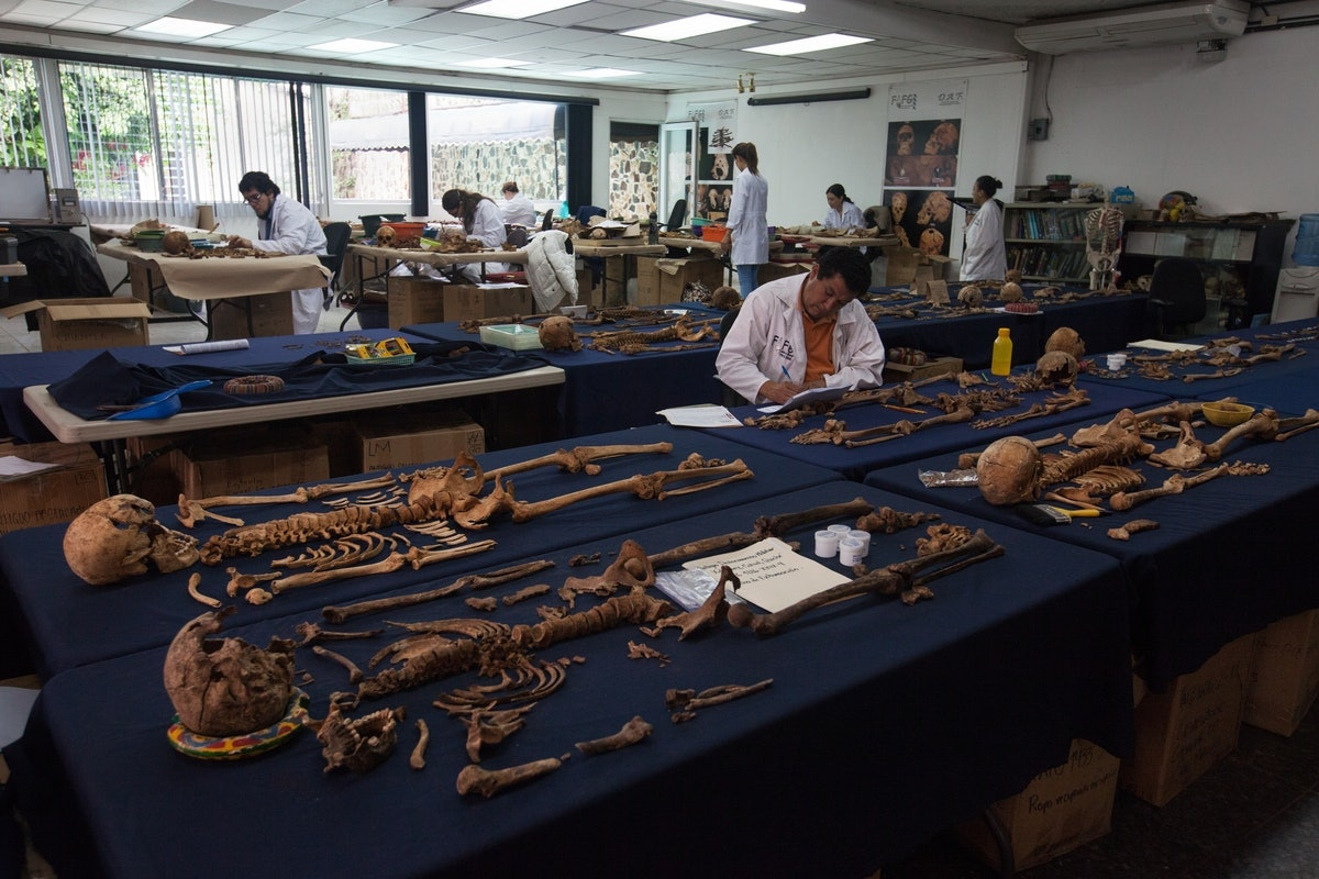 The FAFG: Forensic Anthropology Foundation of Guatemala