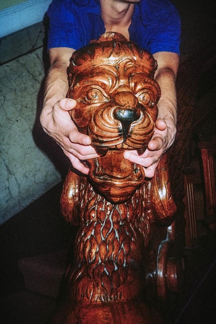 lion2-min