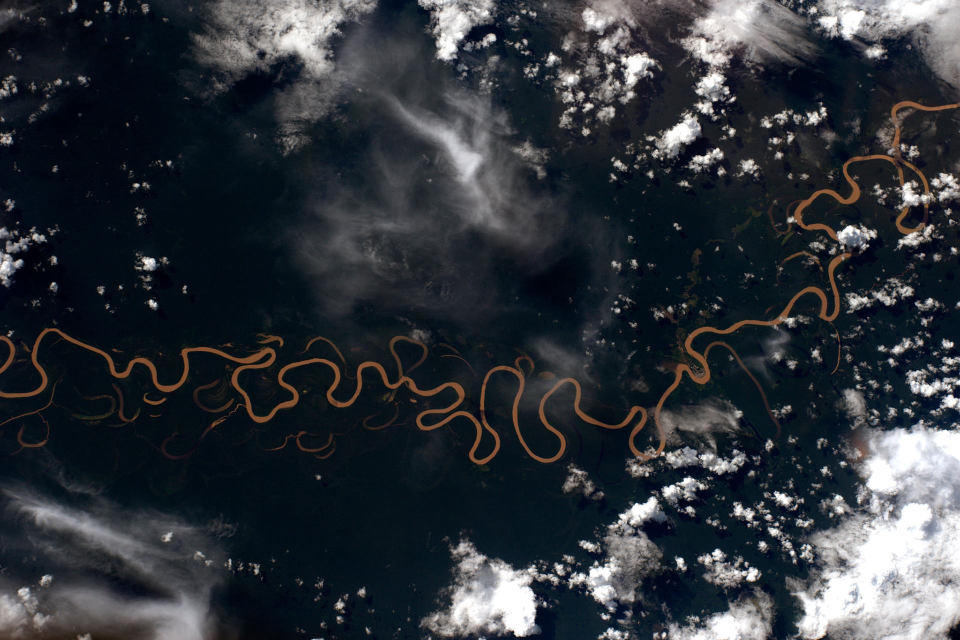Тропические леса Амазонии