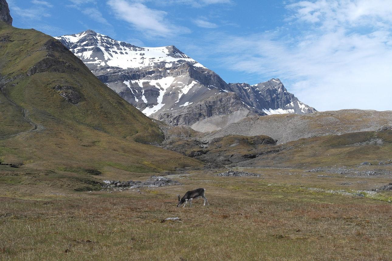 Spitzbergen_07