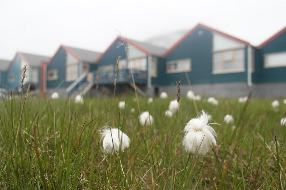 Spitzbergen_11