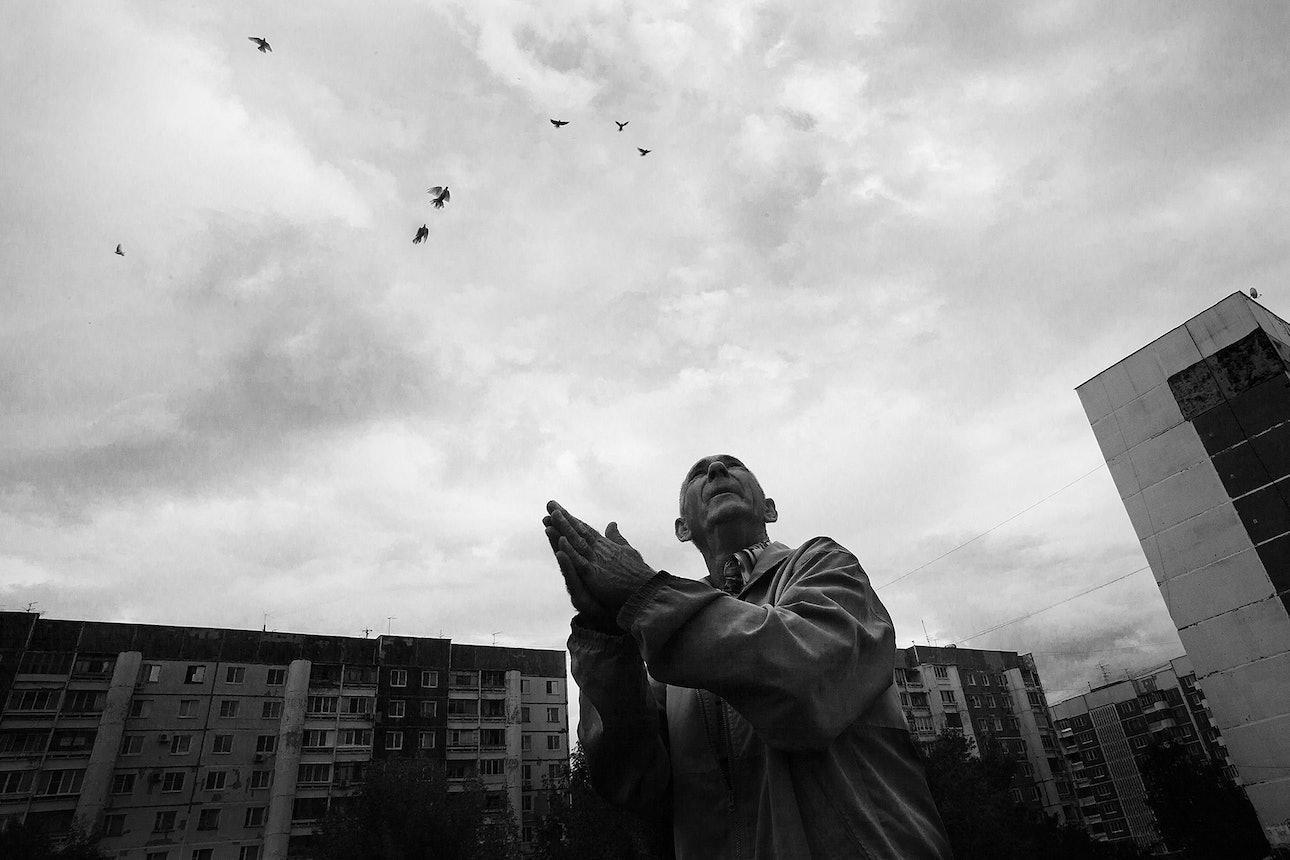 petrov_birds_10
