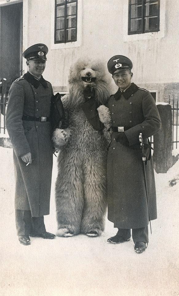 teddybear_07