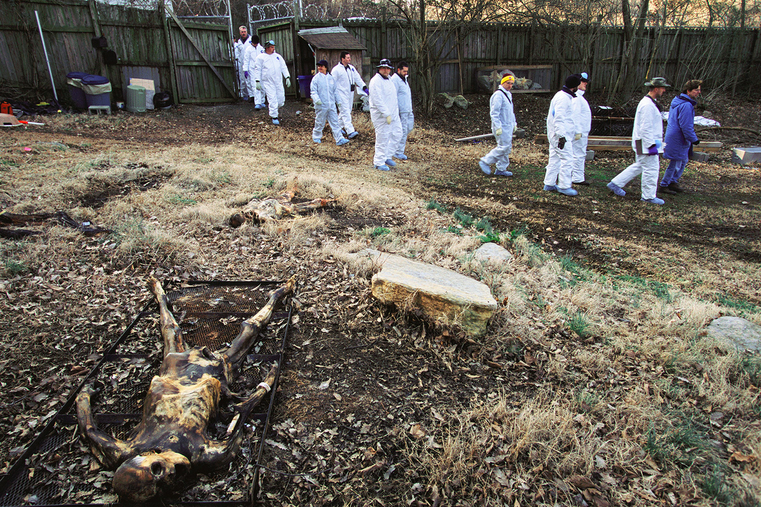 body farm Body farm a research facility where human decomposition is studied in various settings, as a way of objectifying timing and circumstances of death from human remains.