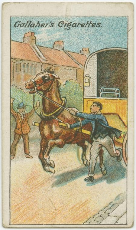 cards_horse_1