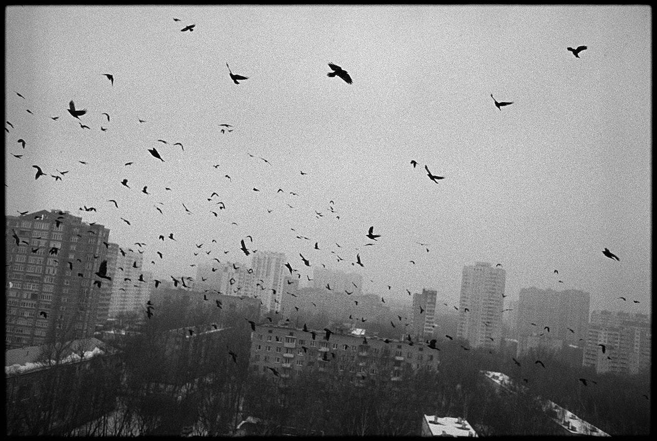 mukhin_01