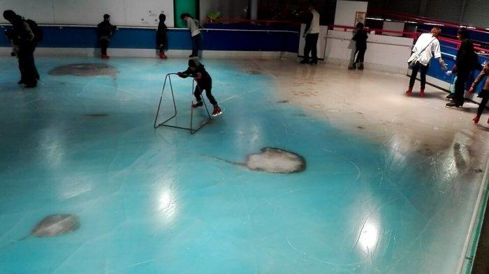 ВЯпонии вкатке заморозили неменее 5 тыс. рыб