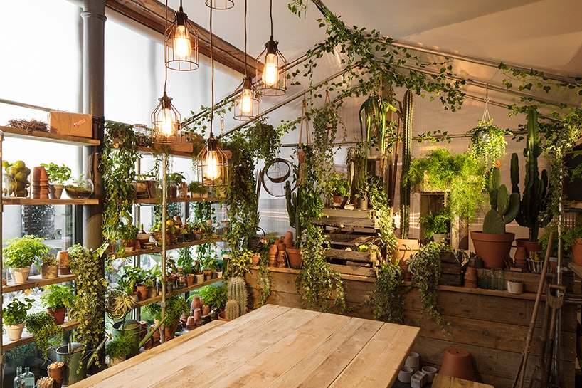 pantone-airbnb-greenery-home_05