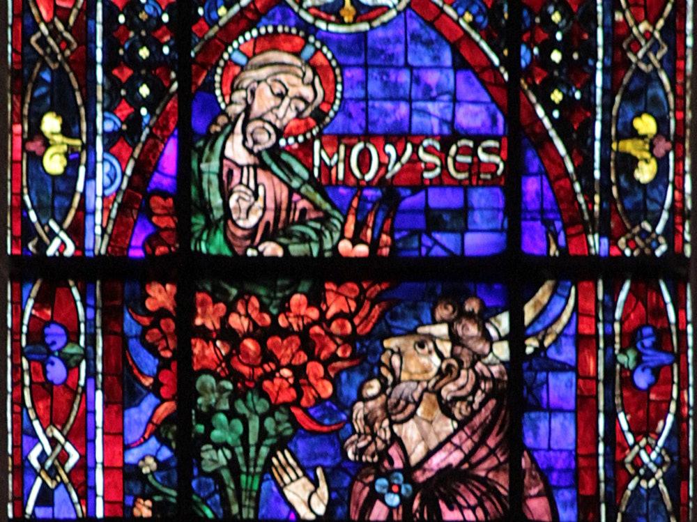 Chartres-102_Moïse