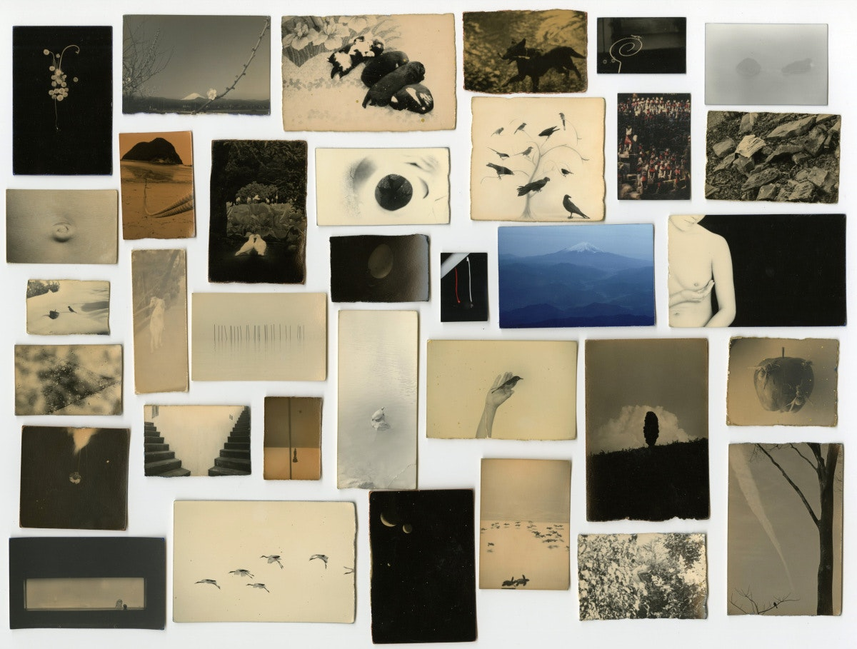 Masao Yamomoto Installation 1