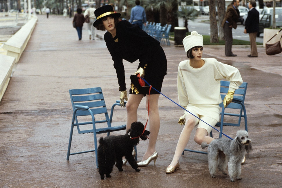 Women with Poodles in Park