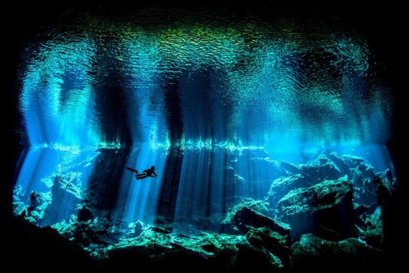 underwater-Photographer-of-the-Year_02