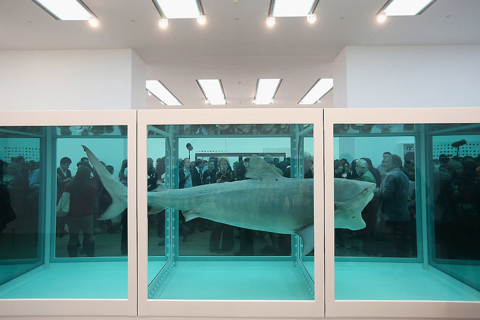 How-Many-Animals-Have-Died-for-Damien-Hirst_02