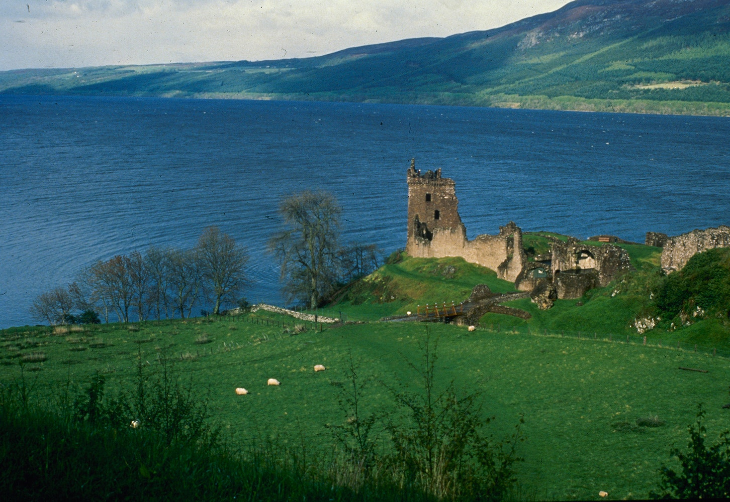 Loch-Ness-Monster_05