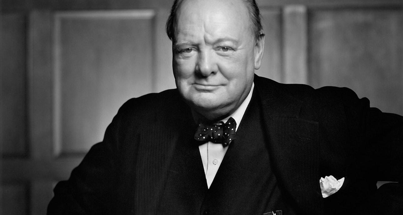 Как сделать фото Черчилля, если он не в духе — Bird In Flight