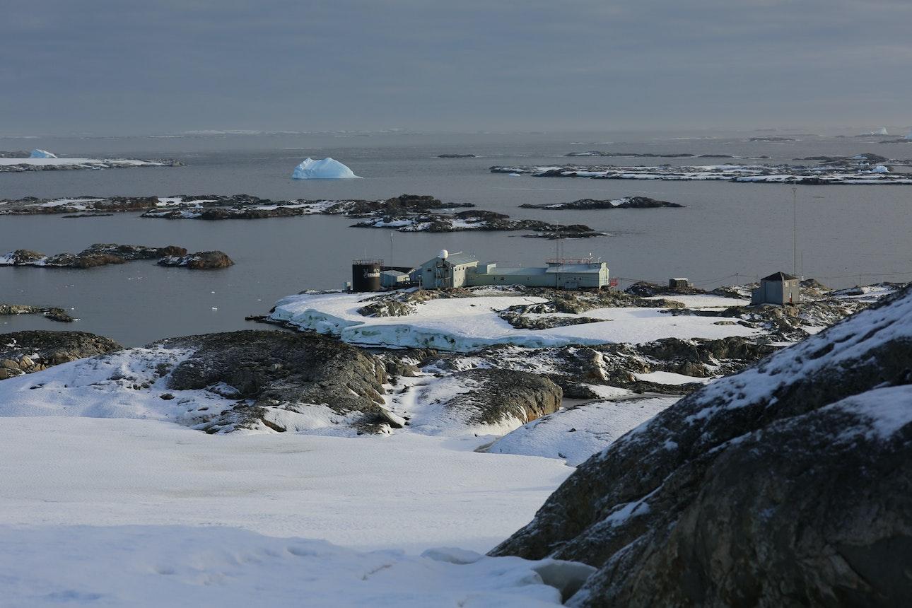 Arctic_08