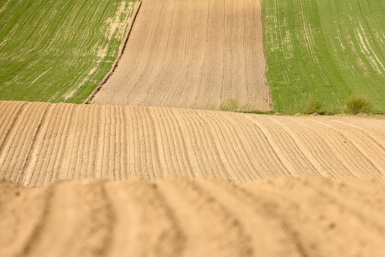 Terra Galicia_(Yurko Dyachyshyn)_12-min