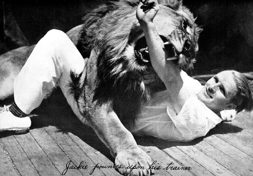 mgm-lion_03
