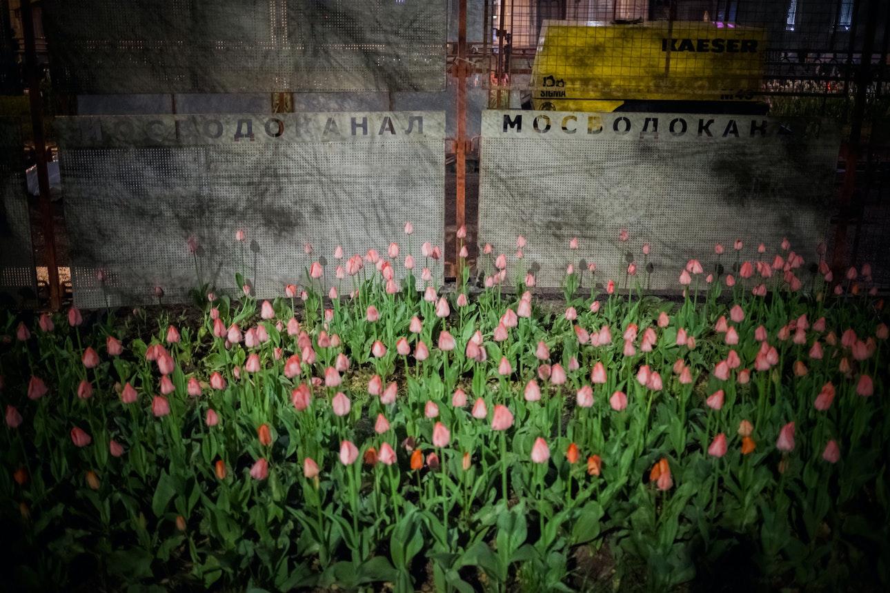 Kanashyuk_Moscow_12