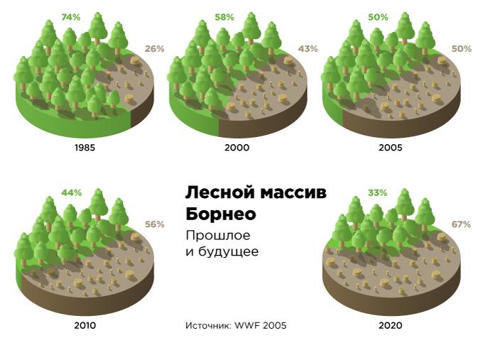 borneo_forest_ru_mobile