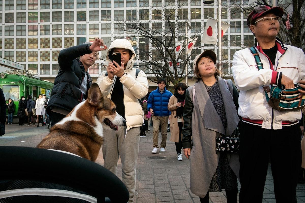 ANGELO_FERRILLO_TOKYO_2