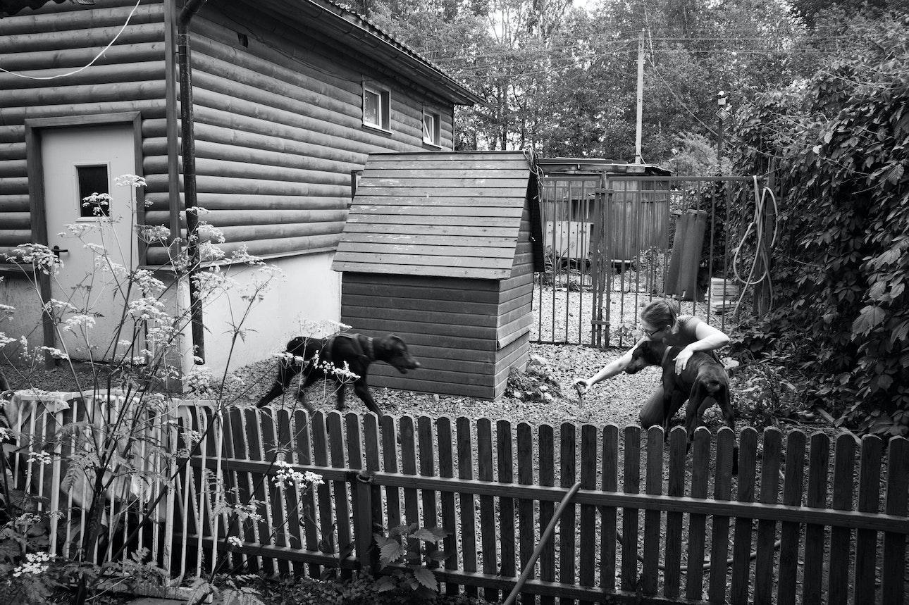 Raya-Mikhailova_dog_02