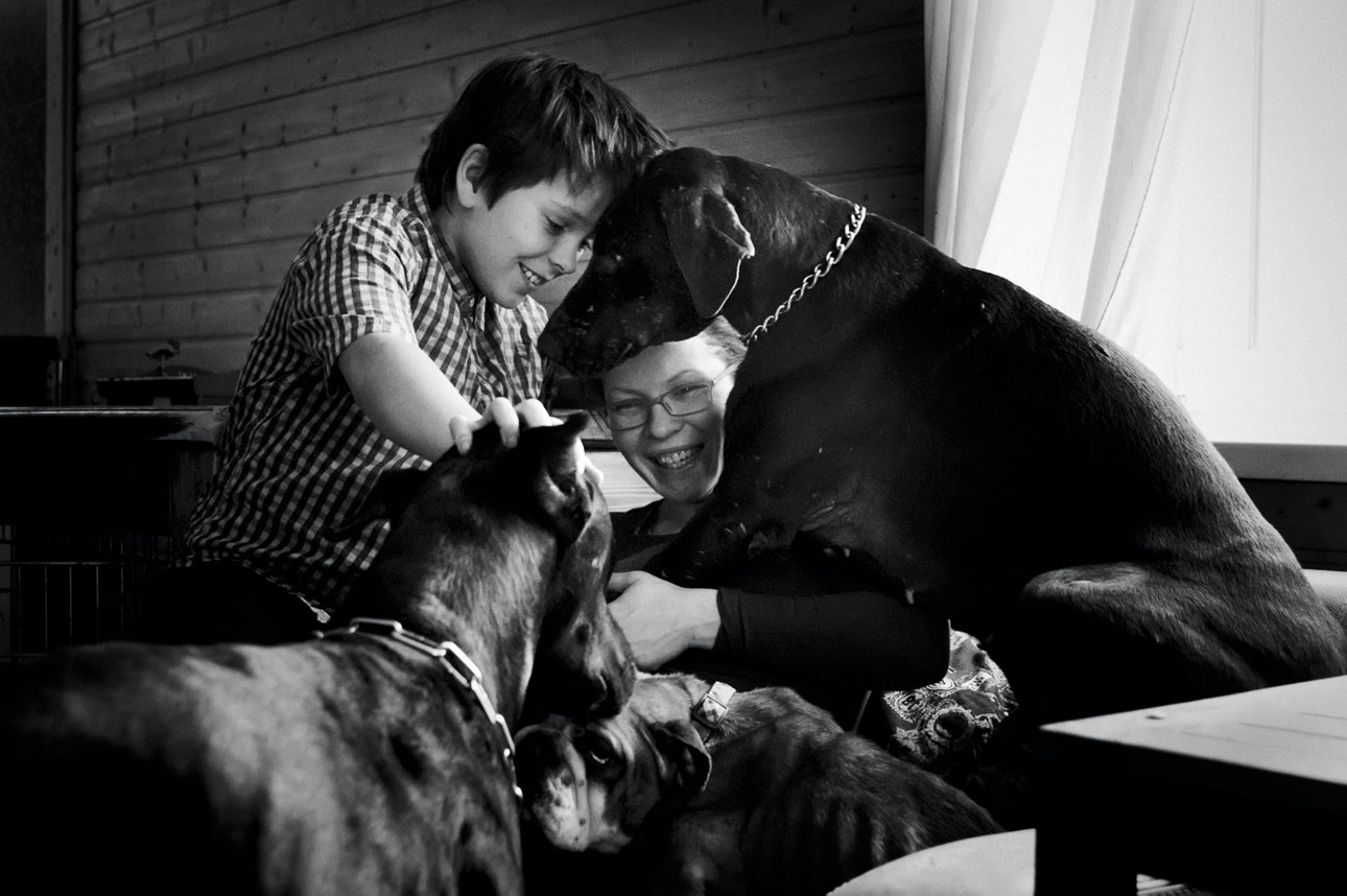 Raya-Mikhailova_dog_03