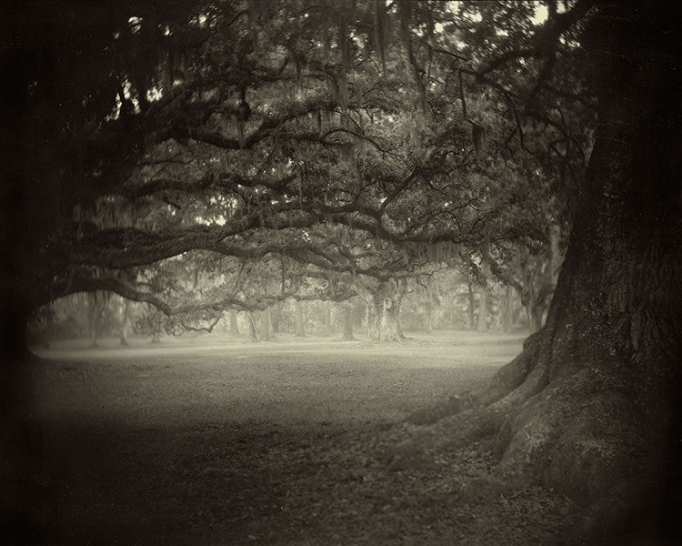 Sally_Mann_Deep_South_03